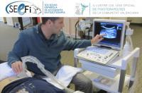 El Colegio de Fisioterapeutas de la CV firma un convenio de colaboración la Sociedad Española de Ecografía en Fisioterapia  SEEFI